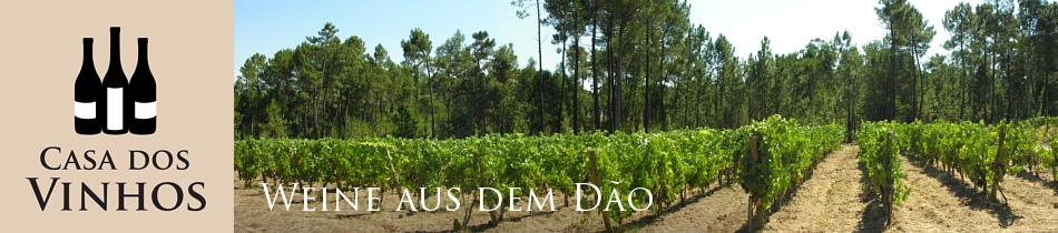 Weine aus dem Dao: Die Region Dao ist eine der traditionsreichsten Weinregionen in Portugal. Hier entsteht Wein der extrem lagerfähig ist und von Weinkennern aufgrund seine Finesse und Essensfreundlichkeit sehr geschätzt wird. In Deutschland war es früher einer der wenigen Weine aus Portugal die man bekommen konnte