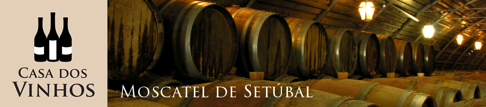 Moscatel de Setúbal: Es ist in Deutschland im Allgemeinen, aber besonders auch in München, Fürstenfeldbruck und Umgebung sehr schwierig an Moscatel de Setúbal zu kommen. Wir bei Casa dos Vinhos in Olching bei München - Fürstenfeldbruck führen diesen außergewöhnlichen Dessert-Wein aus Portugal